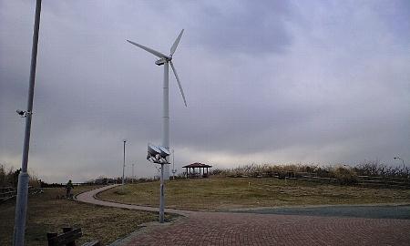 2008013115.jpg