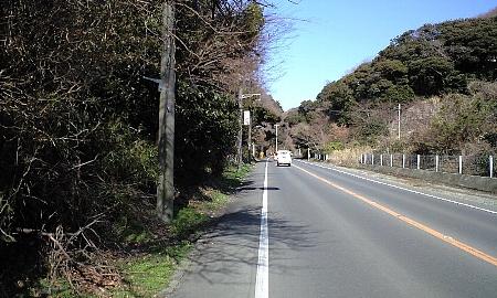 2008021109.jpg