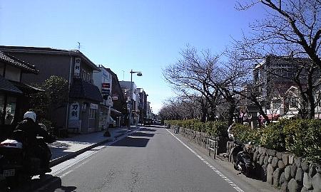 2008021707.jpg
