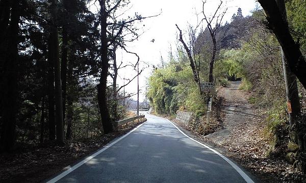 2008031821.jpg