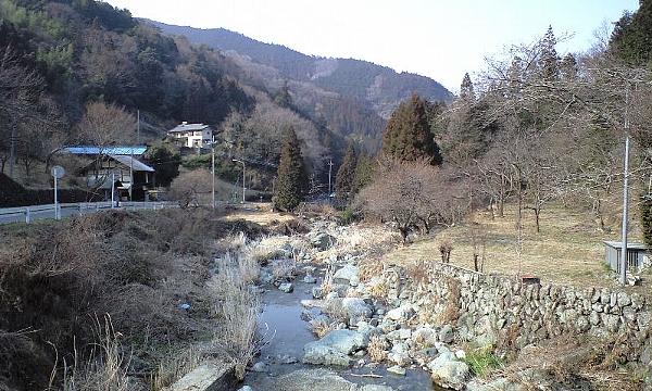 2008031825.jpg