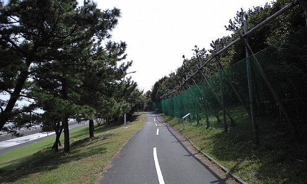 2008040906.jpg