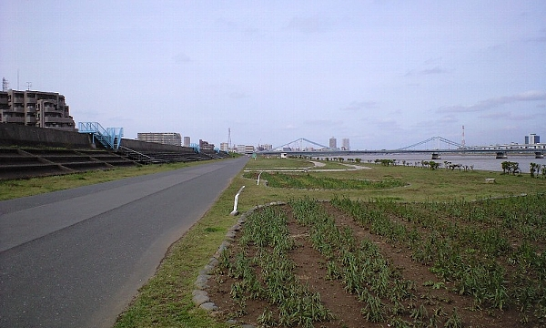 2008040910.jpg