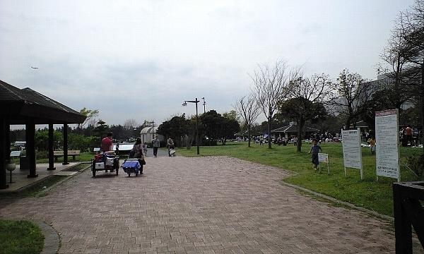 2008041210.jpg