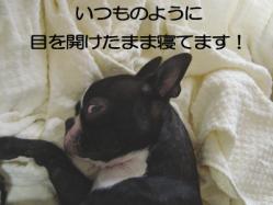 10_19.jpg