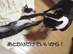 10_21.jpg