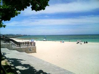 トロピカルビーチw