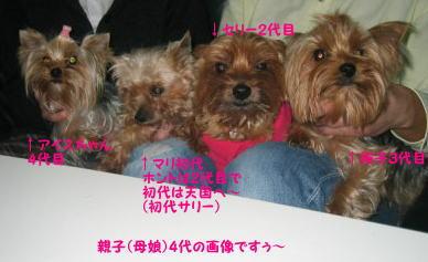 oyako4dai3.jpg