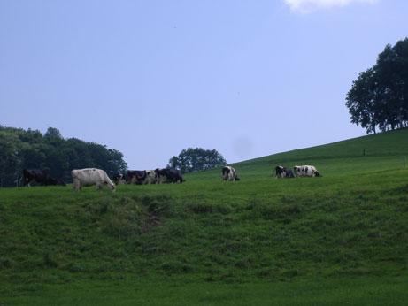 milkroad2.jpg