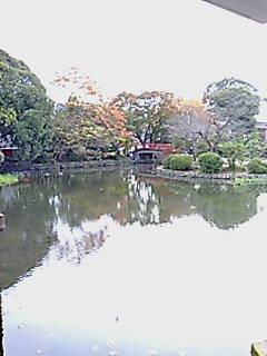 20081118124521_t.jpg