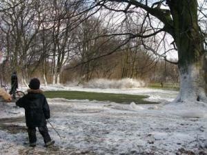 ポーランド 公園