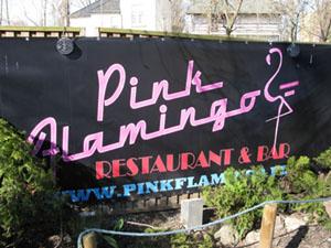 ポーランド Pink Flamingo
