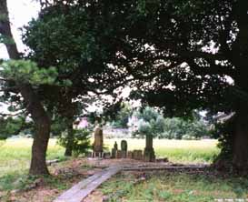 nakanosigeharu中野重治墓