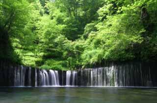 yun_1079白糸の滝