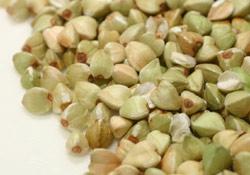 buckwheat-5ソバの実