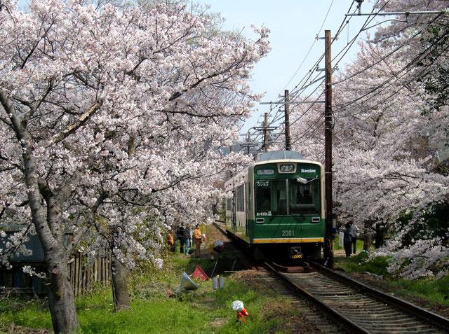 Randen_Narutaki_20040403_2001+2002_0168京福電車