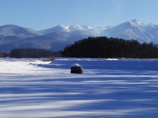 001冬景色本命