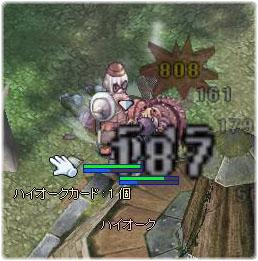 20070127221653.jpg