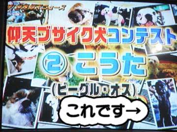 a_tv4.jpg