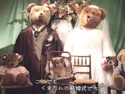 また結婚式♪