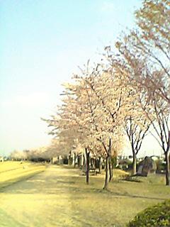 071215-1.jpg
