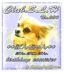 clubSLH