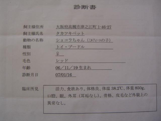 CIMG6855.jpg