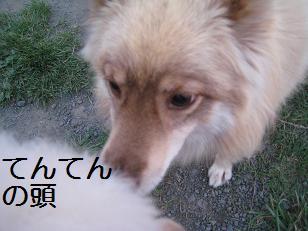 2009_0831_180436-IMG_6266.jpg