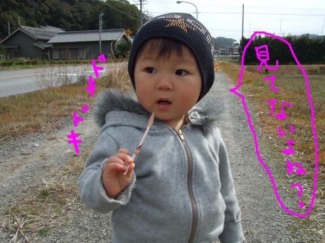 snap_poohsandaisukiyo_200933194535.jpg