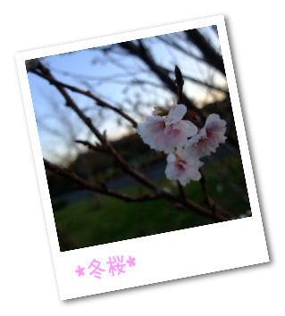 frame8026803.jpg