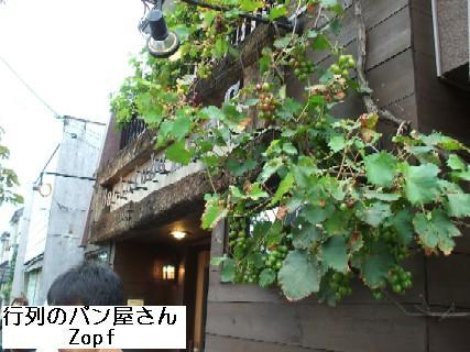 2009_09020042.jpg