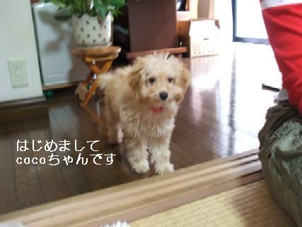 2009_09210094.jpg