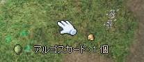 20051127124711.jpg