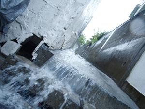 090819雨_ポッパンク
