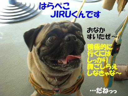 DSC03870.jpg