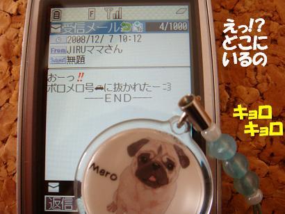 DSC04250.jpg