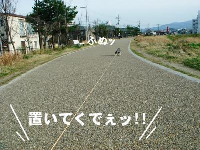 2009030703.jpg