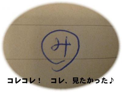 20090316006.jpg