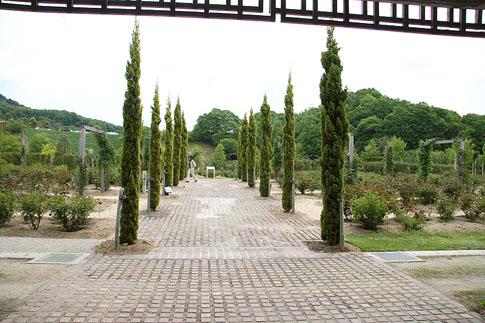 09公園02