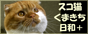 スコ猫くまきち日和バナー小