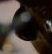ミヤマクワガタの眼