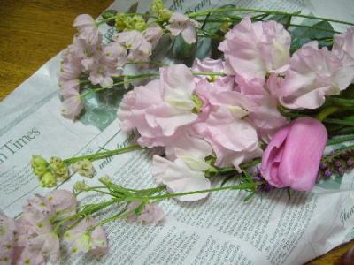 P1140503ピンクの花