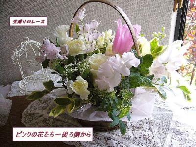 P1140505ピンクの花たち