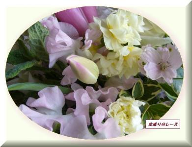 P1140507お花