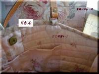 P1140733優しいピンク色バッグ
