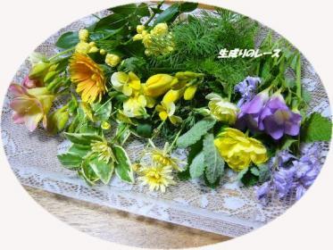 P1140854庭の花
