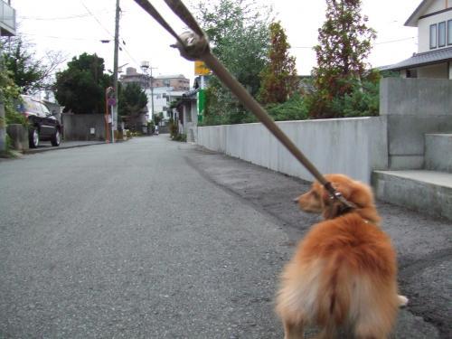 2008_1026・托シ先怦・抵シ匁律0088_convert_20081026153641