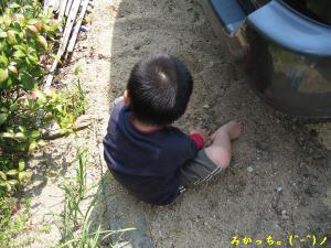 IMG_2603s2006.5.8.jpg