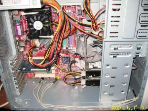 IMG_2687s2006.5.11.jpg