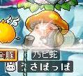 Maple0271.jpg
